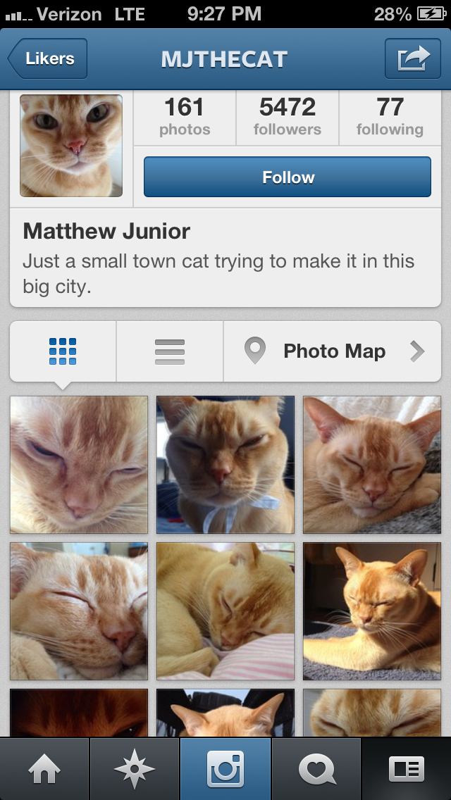 I love cats, but this spam account is much too corny for me.