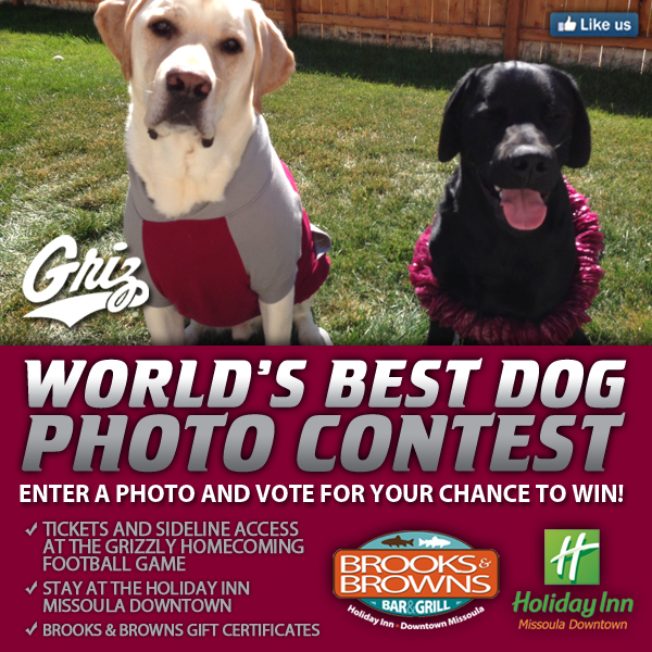 This week we are running the Grizzly/Holiday Inn World's Best Dog Contest.