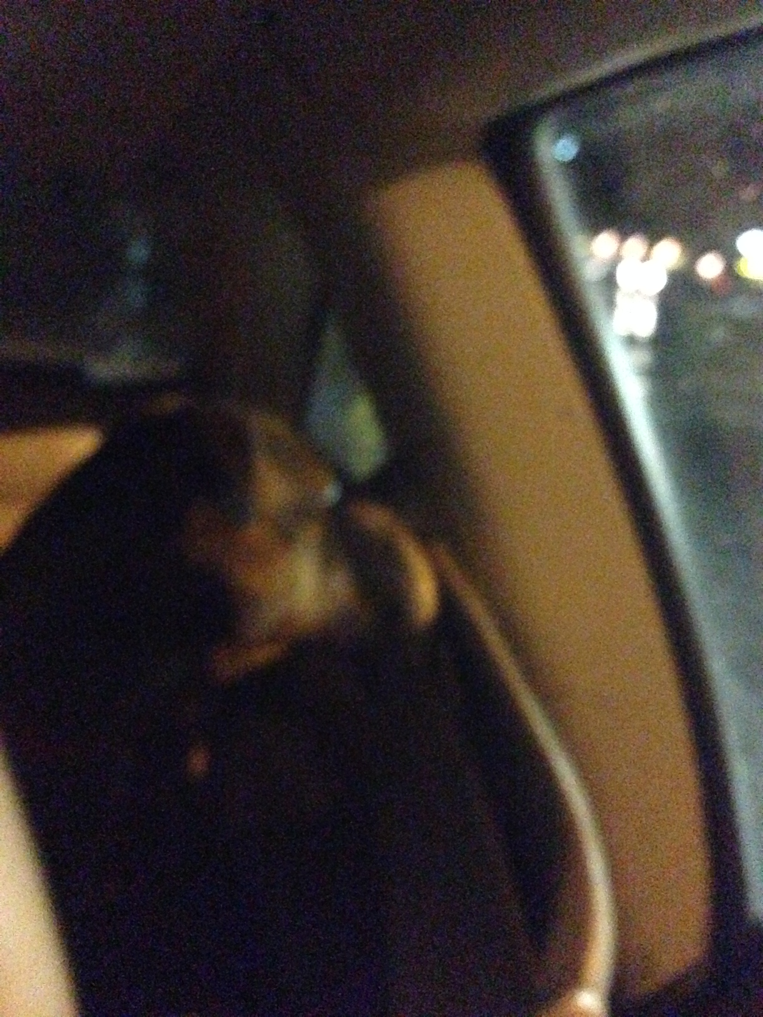 This was the man's dog that sat in my back seat for the 88 mile drive!