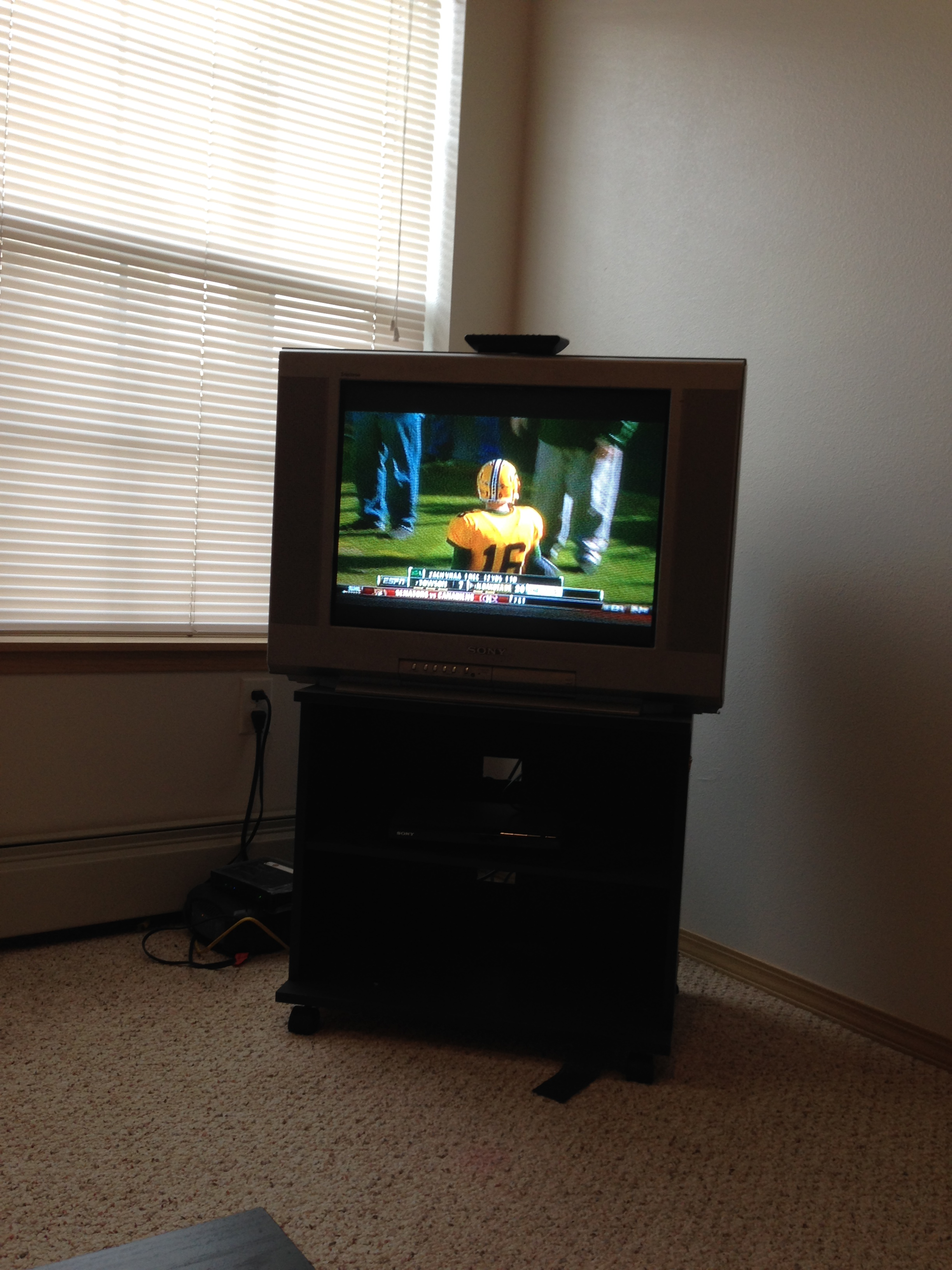 Here is my famous Sony Trinitron television set I have owned for over seven years.