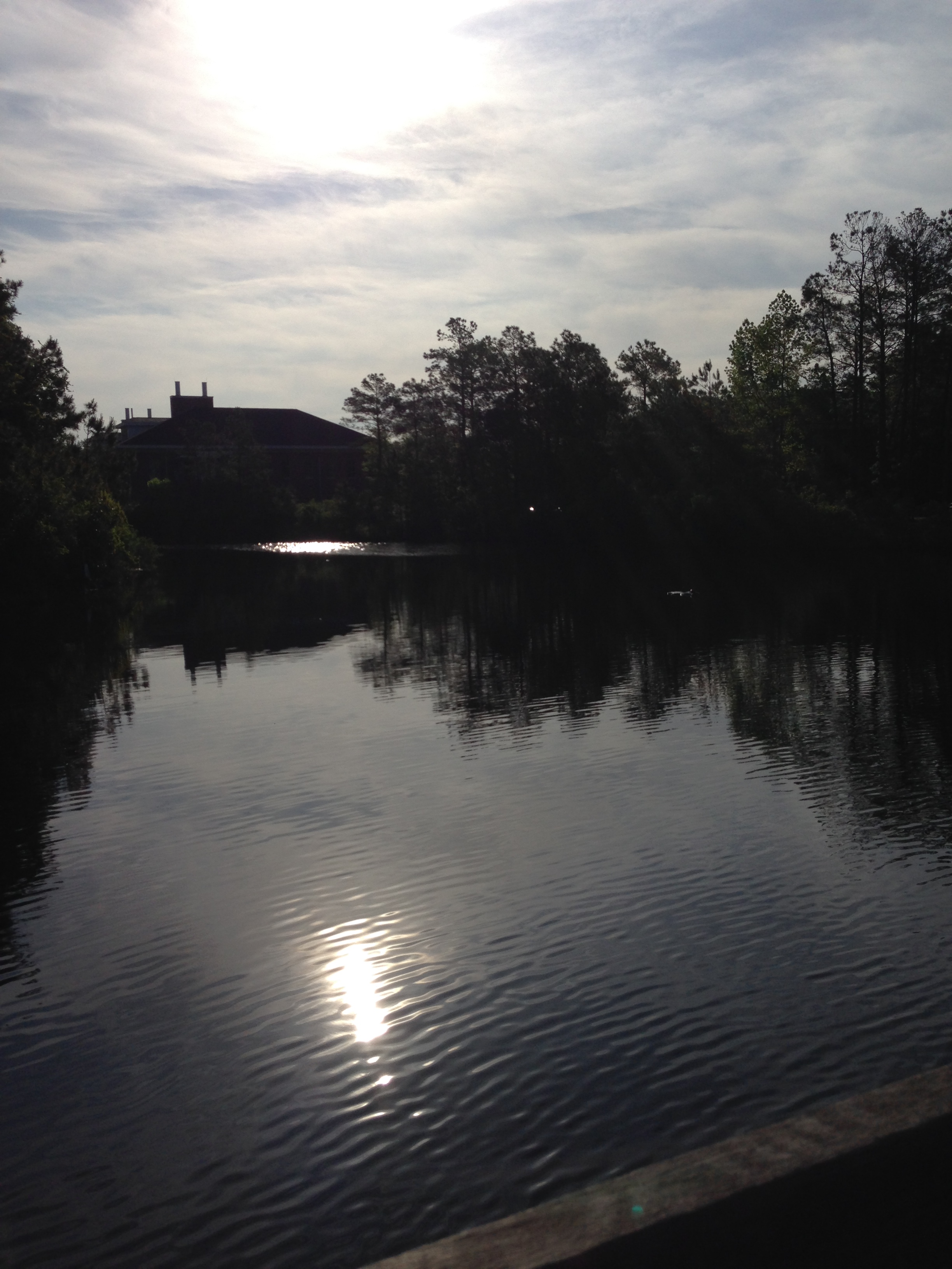 During an early morning stroll on campus I took this photo of the pond while crossing the bridge.