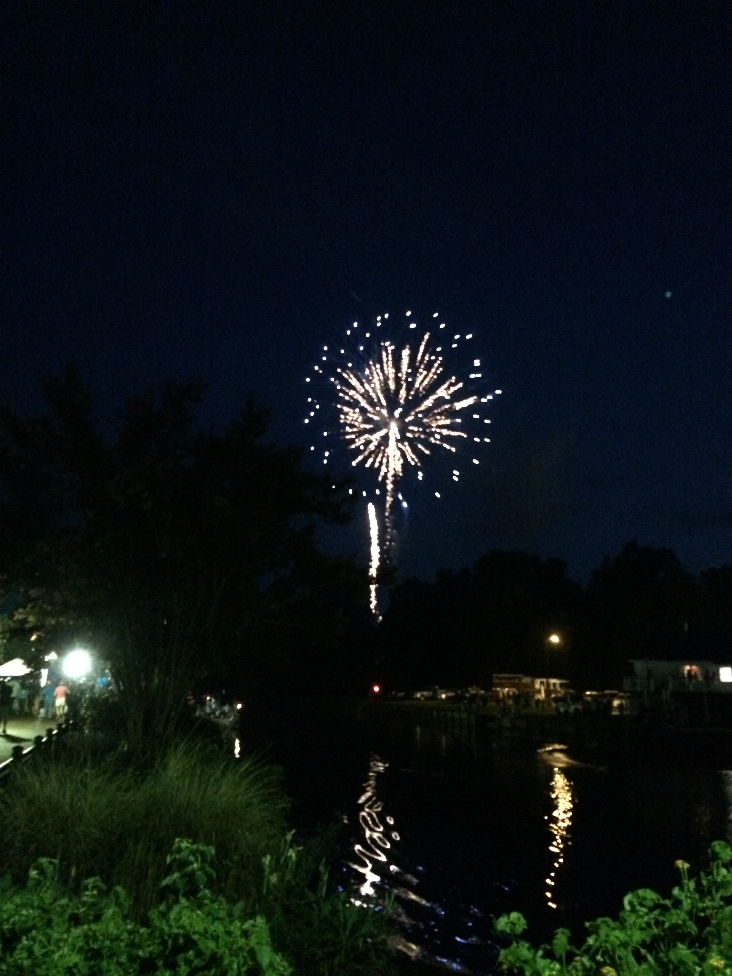 An image of the fireworks show we enjoyed.
