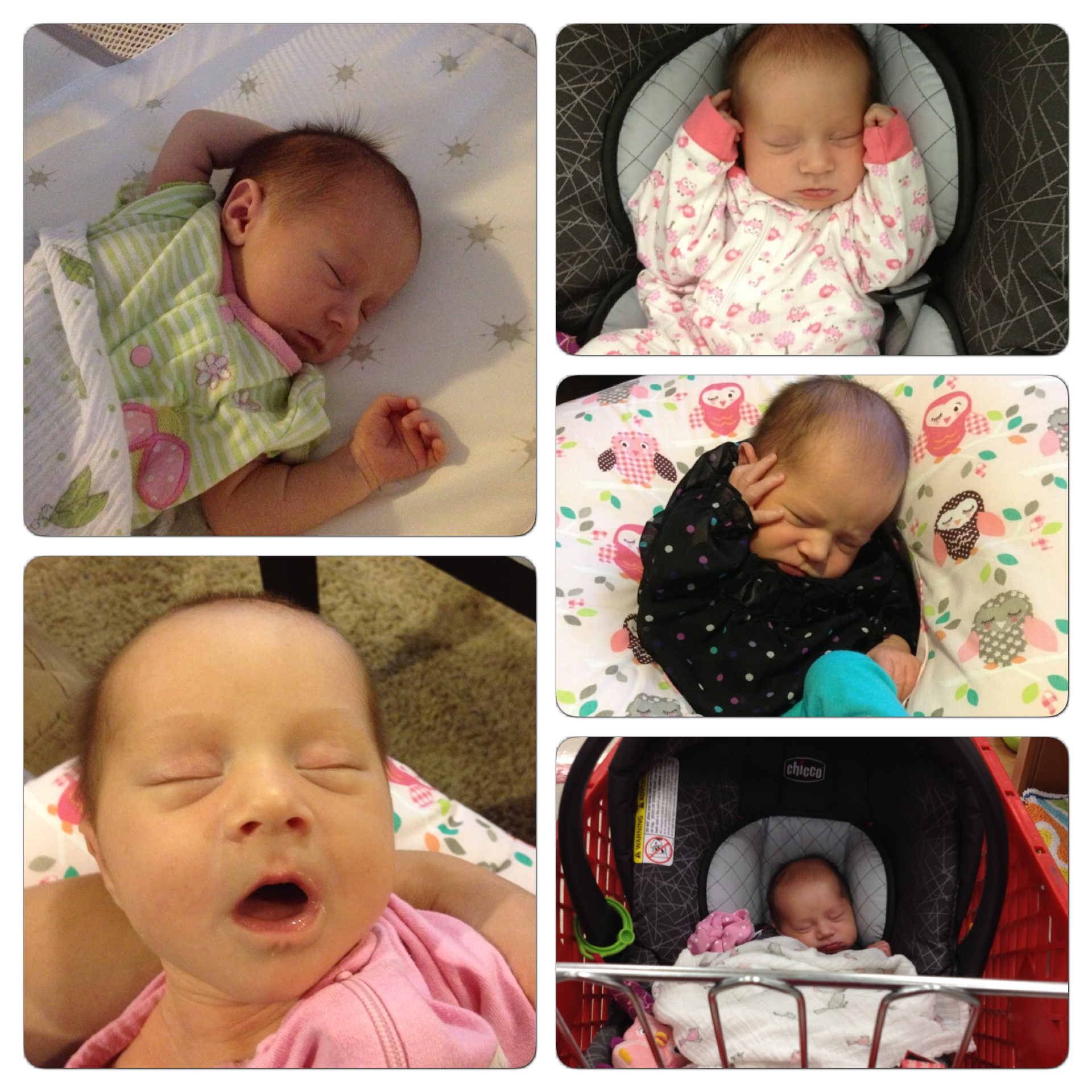 Here are some of the latest shots of Mikayla.