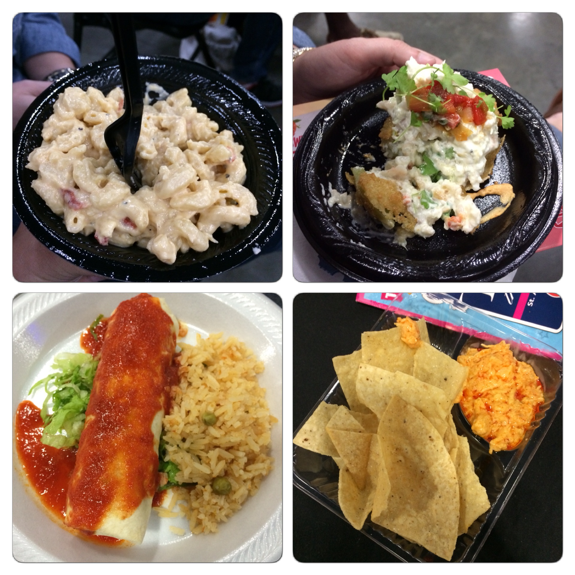 Here are some of the dishes we had. The upper left corner is the chicken macaroni and cheese. The top  right hand corner is a fried green tomato. The bottom right hand corner is buffalo chicken dip and the bottom left hand corner is a burrito with rice.