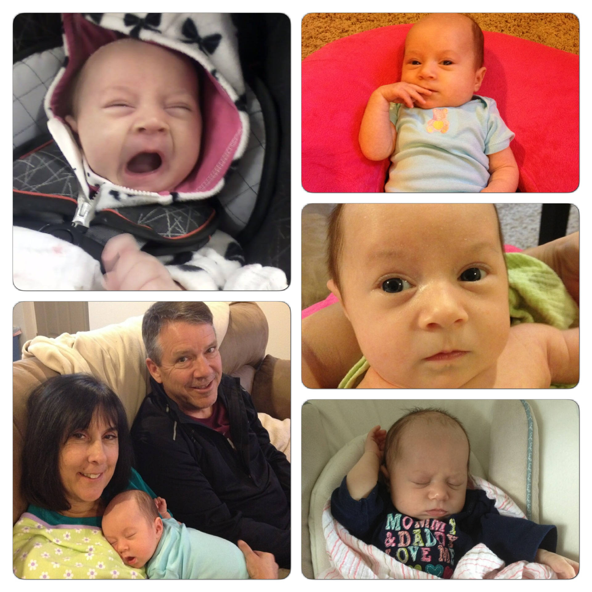 My niece, Mikayla, at six weeks old (my parents with her on the bottom left photo).