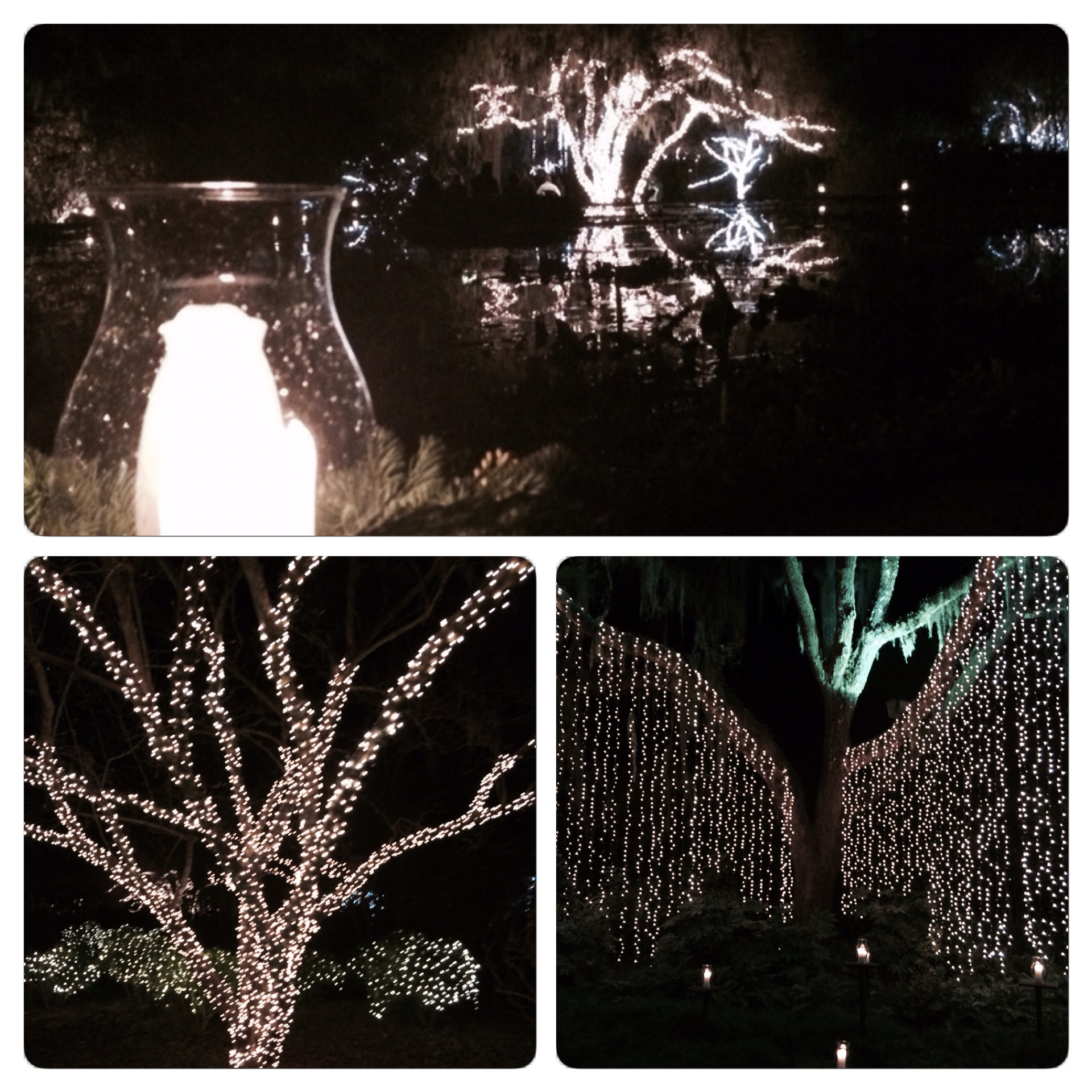 Some of the photos I took of the lights at Night of a Thousand Candles.