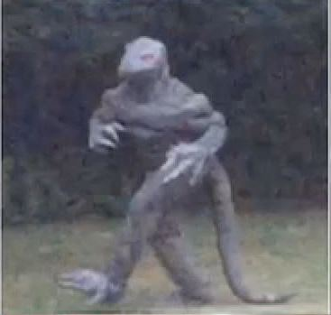 This grainy photo of a person in a lizard suit portraying Lizard Man was circulated nationally this past week.