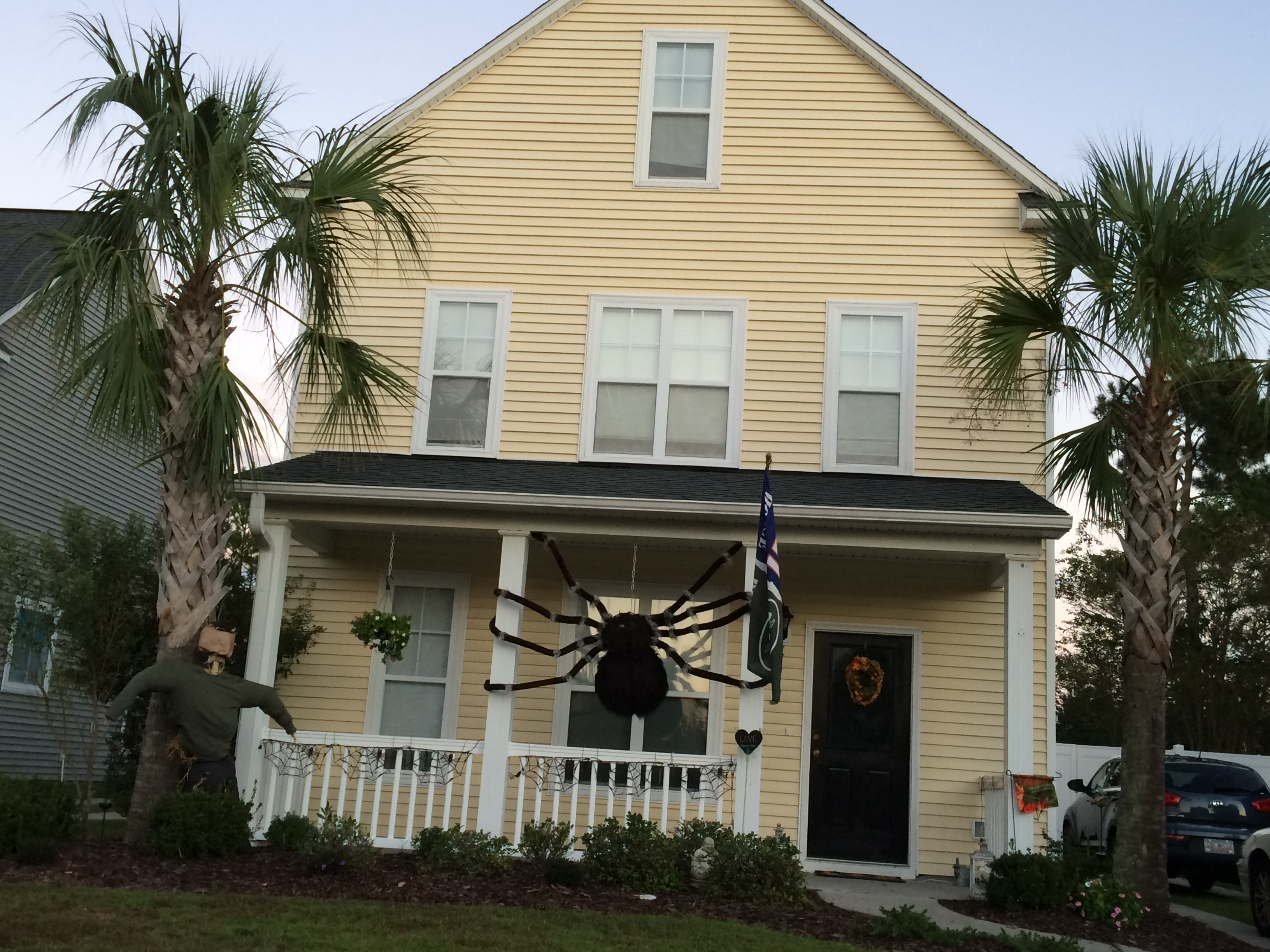 That is one big spider.