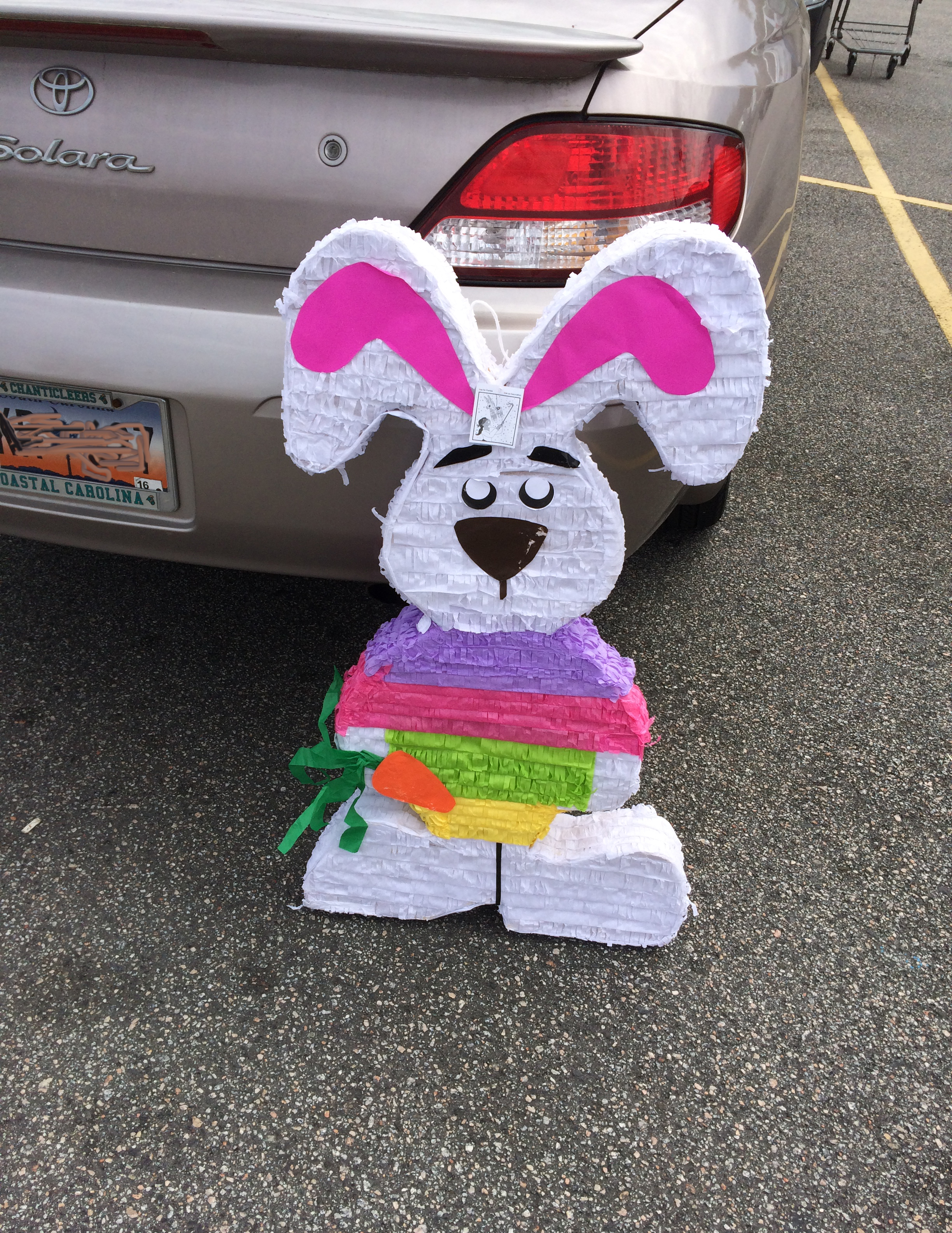 The bunny piñata I purchased up against my car.