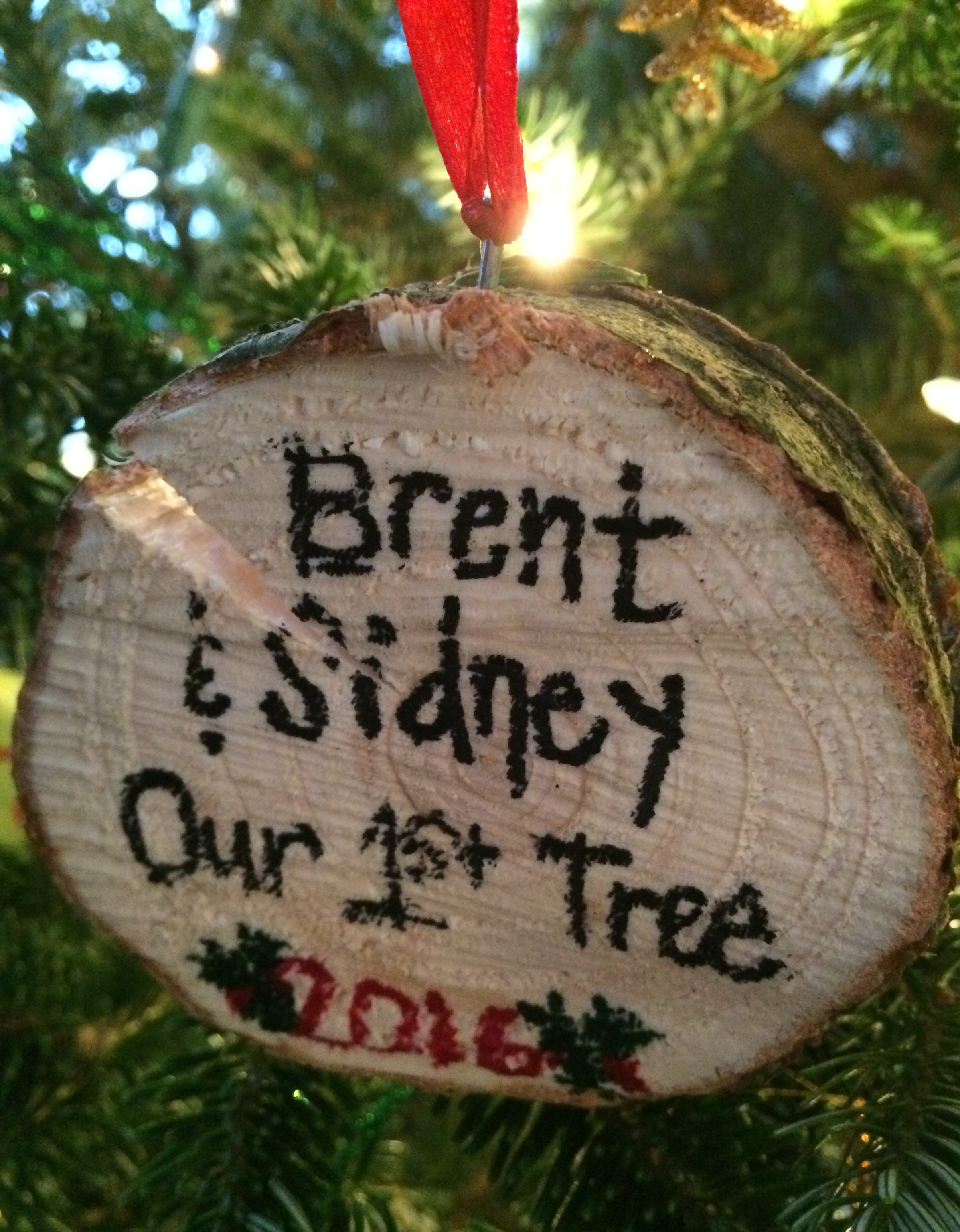 This was a brilliant idea by Sid to make this ornament using the stump of our tree.